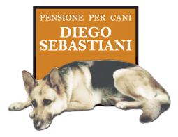 Diego Sebastiani