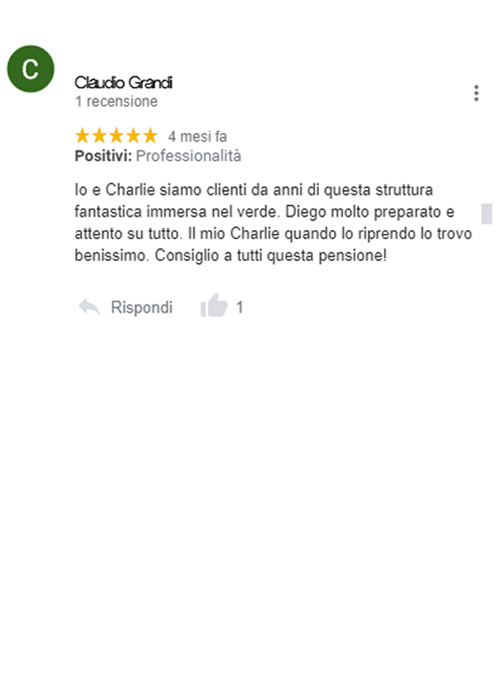 recensione google pensione cani roma diego sebastiani