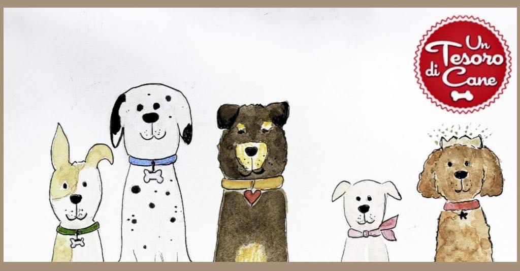 Un Tesoro di cane Odv, quando l'amore per gli animali diventa una missione
